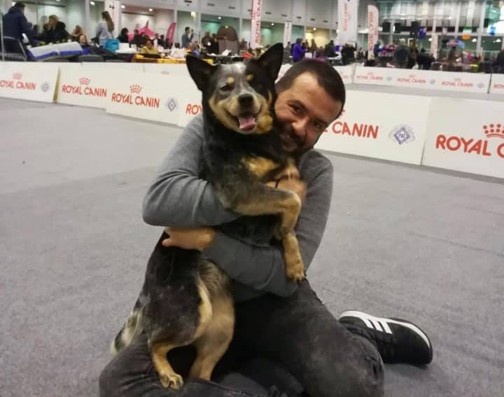 Padova International Dog Show 12/01